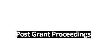 BSKB Post-Grant Proceedings